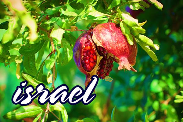 Israel Tel Aviv  ISRAEL 2019 TARAMUL RELIGIILOR 1